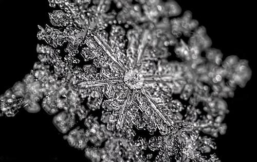 На відео записали, як утворюються сніжинки. Неймовірне видовище