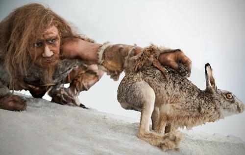 Ученые выяснили, что древние люди были хищниками