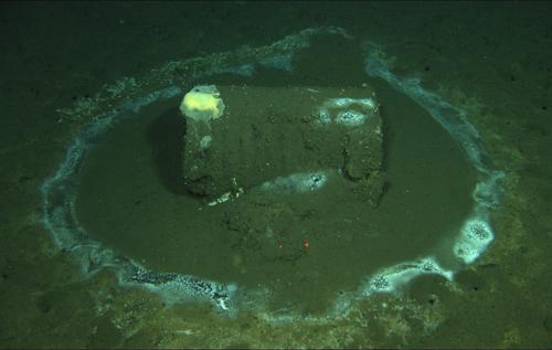 Крупнейшая экологическая угроза для США: на дне океана в 20 километрах от Лос-Анджелеса обнаружили 25 тысяч разрушающихся бочек с ДДТ и химическими отходами