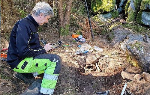 В Швеции случайно нашли уникальный клад бронзового века