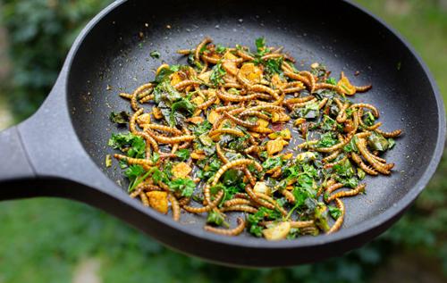 Новый продукт питания: в магазинах и ресторанах Евросоюза одобрили продажу червей