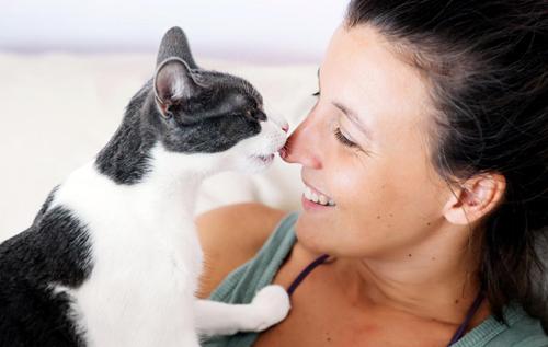 Человек и кошка: специалисты рассказали, почему следует завести пушистого друга