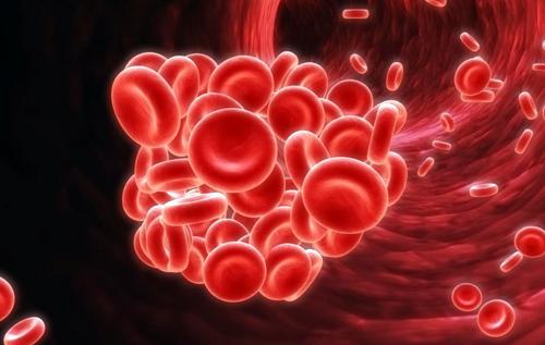 Кардиолог назвал провоцирующие появление тромбов продукты