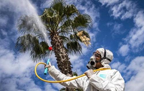 Убьет ли летняя жара COVID-19: ученые дали окончательный ответ
