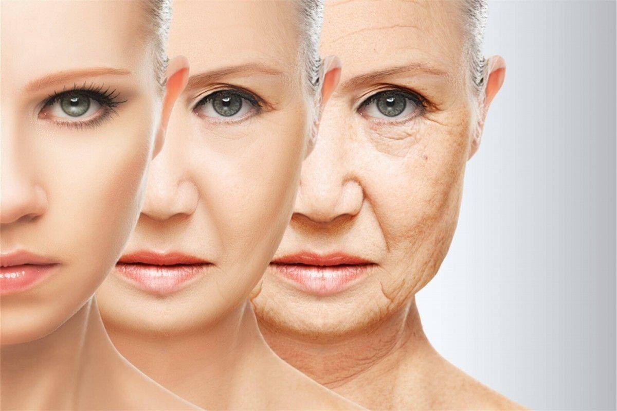 Израильские ученые повернули вспять процесс клеточного старения у людей