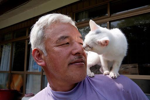 Мужчина остался в зараженной зоне у атомной электростанции Фукусима, чтобы спасать котов