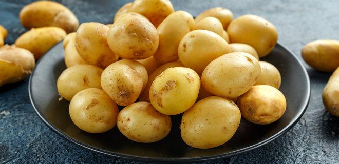 """Світлана Фус:У більшості """"гріхів"""" звинувачувати картоплю не варто"""