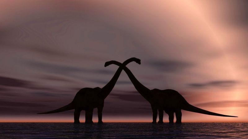 ВВС: Як динозаври займалися сексом