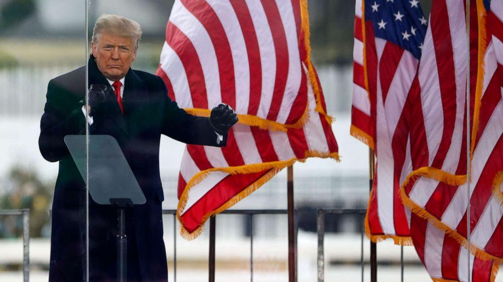 """Адвокаты Трампа назвали процесс импичмента """"политическим театром"""""""