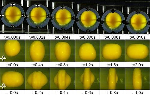 Эксперимент с яйцом показал, что может случиться с мозгом при ударах