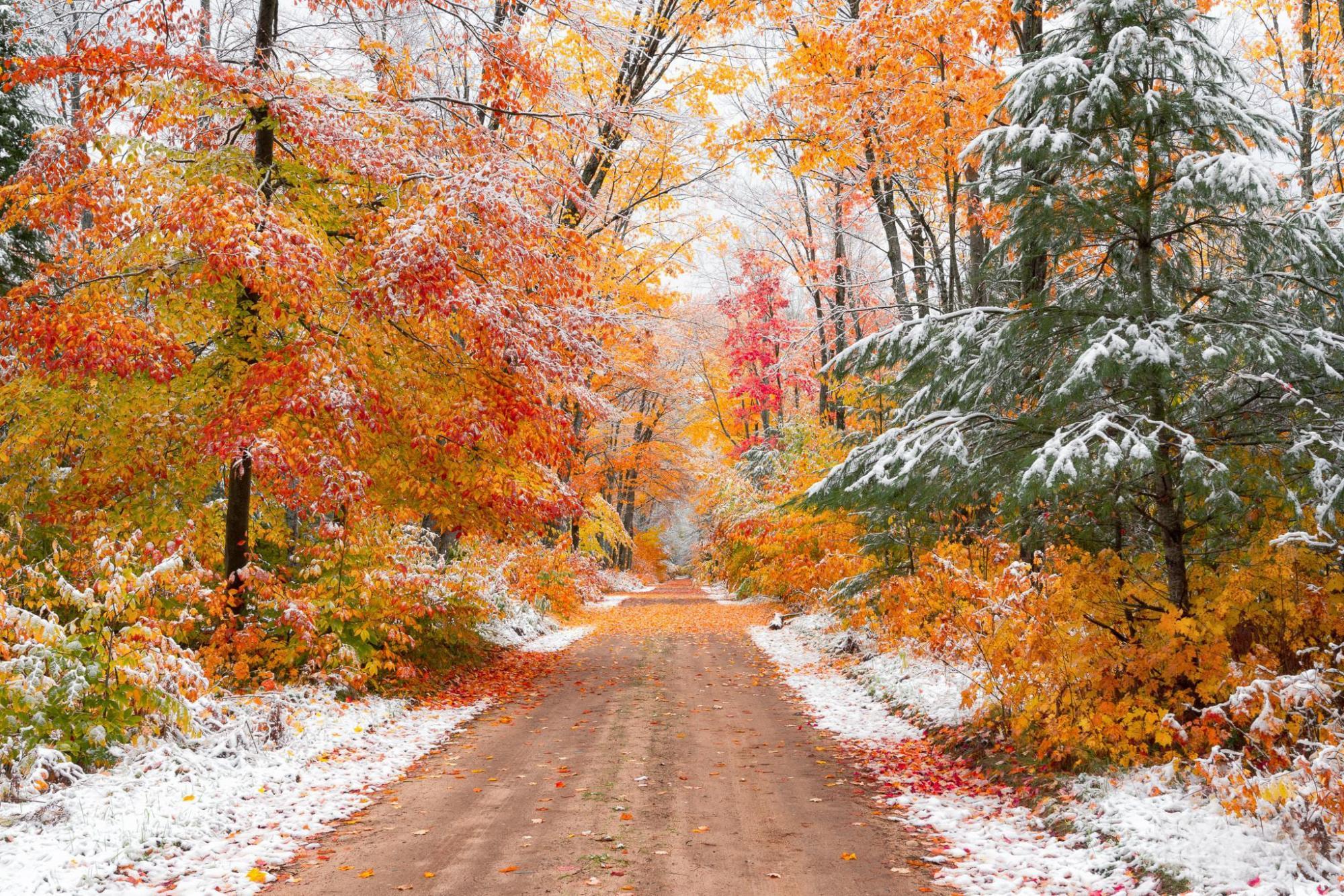 Перший сніг в Україні може випасти вже в жовтні – метеоролог