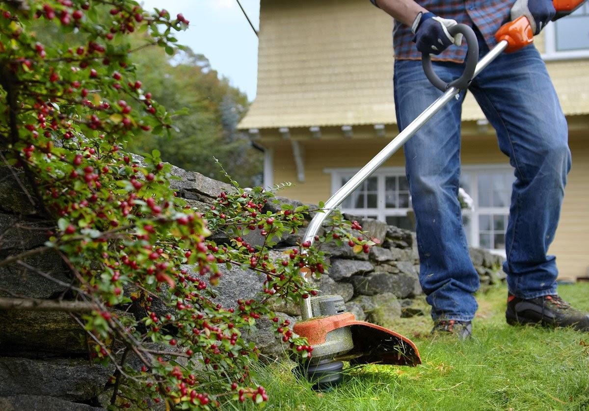 Какие бывают садовые триммеры?