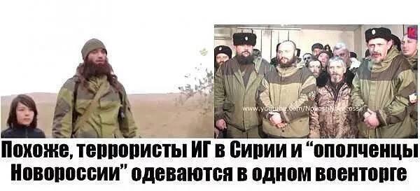 """Олланд проведет встречи с Обамой и Путиным для координации борьбы с """"Исламским государством"""" - Цензор.НЕТ 9137"""