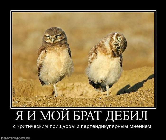 """Генпрокуратура изучает возможность сокращения должности заместителя генпрокурора, - """"Украинские новости"""" - Цензор.НЕТ 842"""