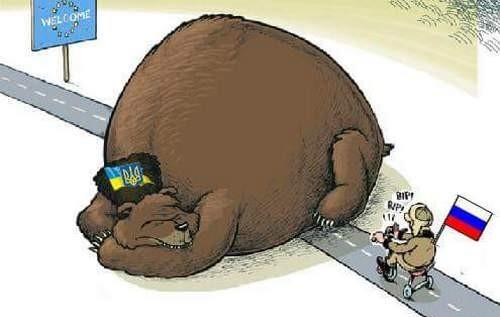На въездах в Закарпатье началась блокада российских фур, следующих в Европу - Цензор.НЕТ 7844