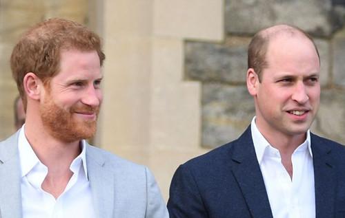 Принцы Уильям и Гарри заказали статую принцессы Дианы к ее ...