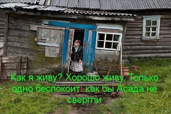 Украина будет экспортировать мясо в ОАЭ. На очереди - мед и кондитерская продукция - Цензор.НЕТ 9897