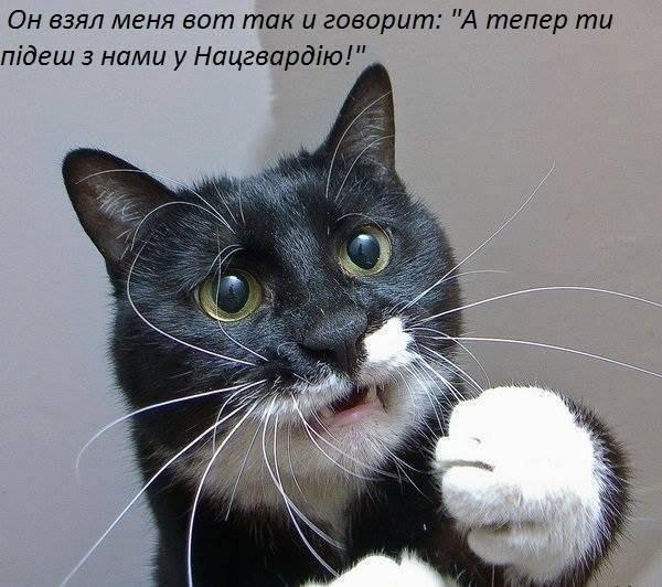 На Харківщині тиждень голодував призовник, який відмовився складати присягу - Цензор.НЕТ 3525