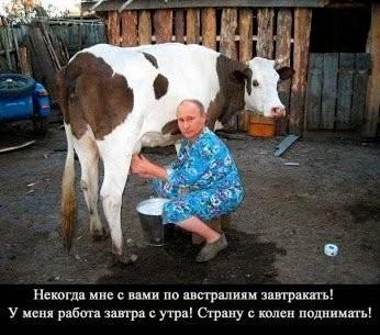 Наемники РФ обстреливают свои же позиции из-за плохой выучки, - ГУР - Цензор.НЕТ 739