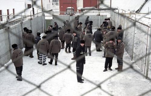 экстраординарность изысканность как разводят родных заключенных размещения