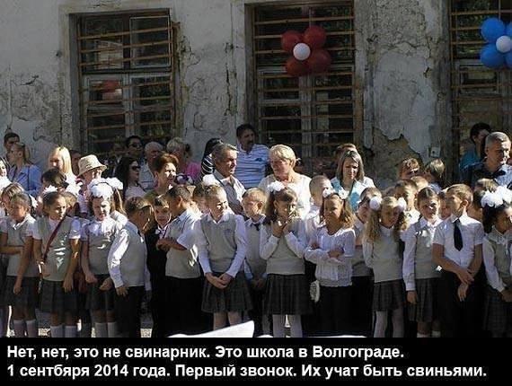 МИД Канады: Незаконная аннексия Крыма Россией и ее вмешательство в восточной Украине ставят под сомнение всю систему международных гарантий - Цензор.НЕТ 9448