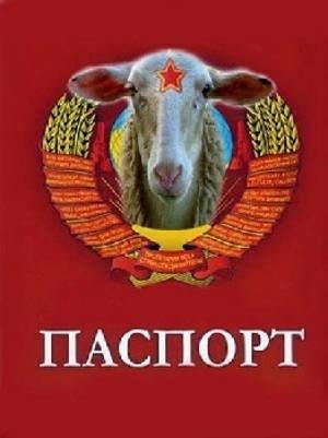 Глава Меджлиса объяснил причины сотрудничества с кремлевскими марионетками - Цензор.НЕТ 2388