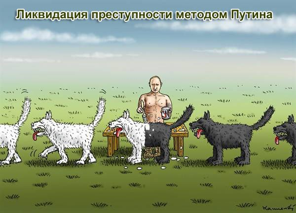 """Украинские военнослужащие обещают реагировать, если найдут в конвое РФ """"негуманитарные"""" предметы - Цензор.НЕТ 3933"""