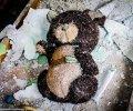 Детские садики в Припяти. Крик детской души в мертвом городе. ФОТО