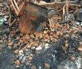 Террористы уничтожили грузовики с боеприпасами защитников Донецкого аэропорта. ФОТО