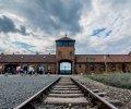 Аушвиц-Биркенау: за колючей проволокой памяти. ФОТО