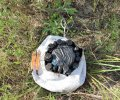Піротехніки щоденно знаходять «неприємні сюрпризи» на звільнених територіях Донбасу