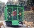 Китайский зоопарк и посетители в клетках. ФОТО